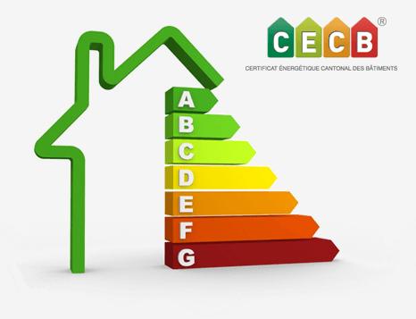Expertise Cecb
